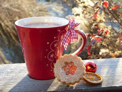 christmas coffee mug with biscuit