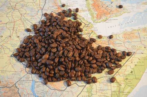 coffee beans on a map