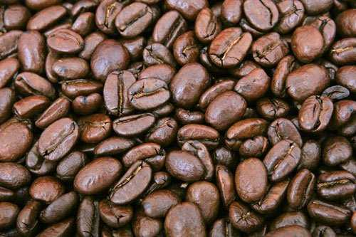commercial coffee beans for latte
