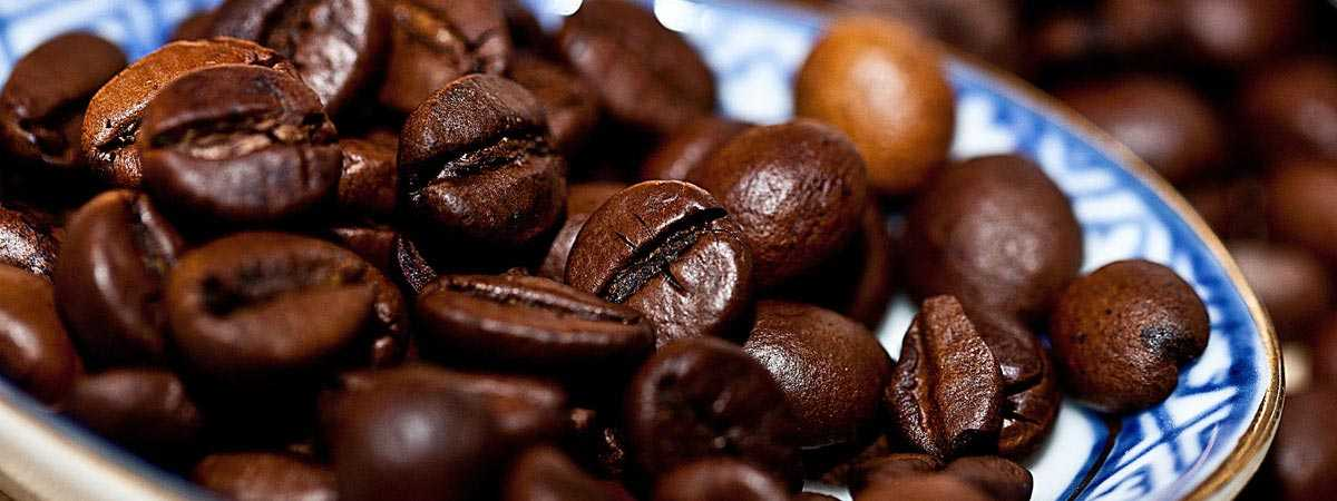 Ever wanted to learn more about Arabica Coffee?