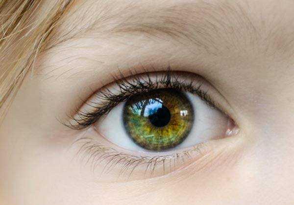 healthy green eye