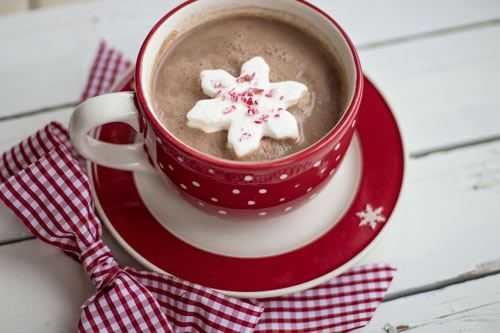 snowflake marshmallow in a hot chocolate