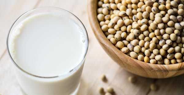 soya milk with soya beans
