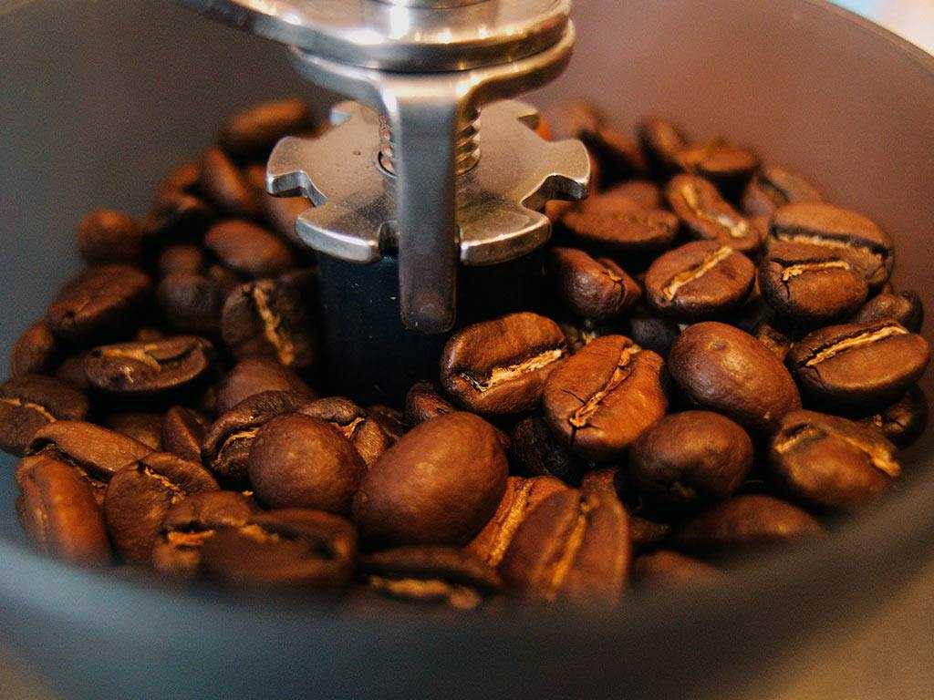 coffee beans in a grinder