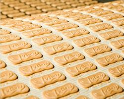 lotus biscuits baking