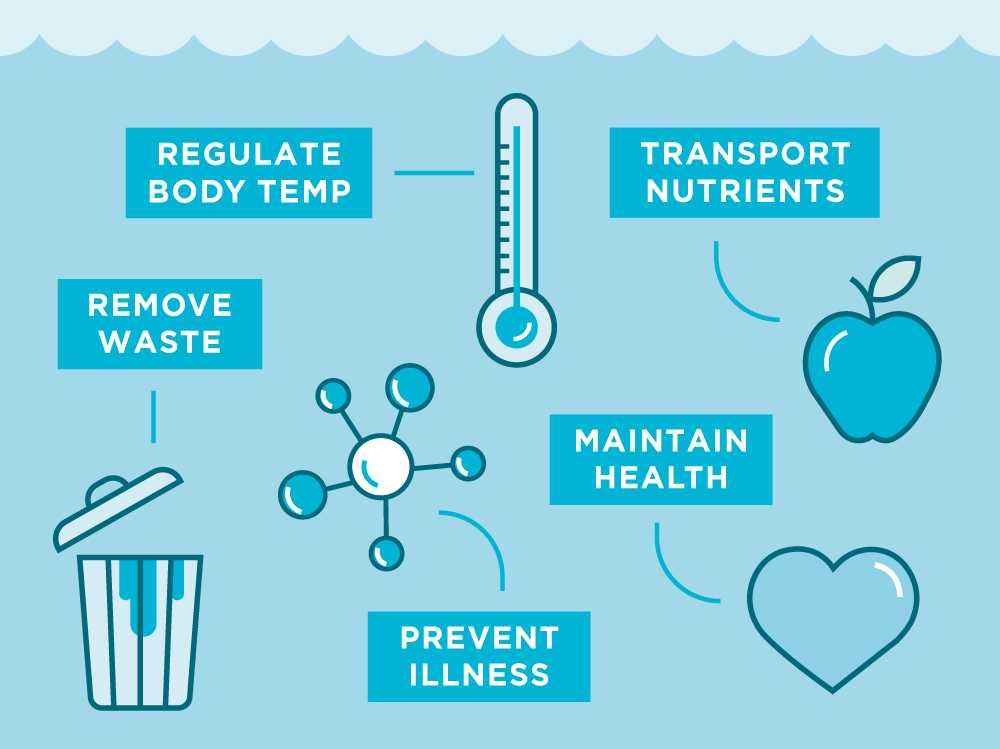 why do you need water infographic