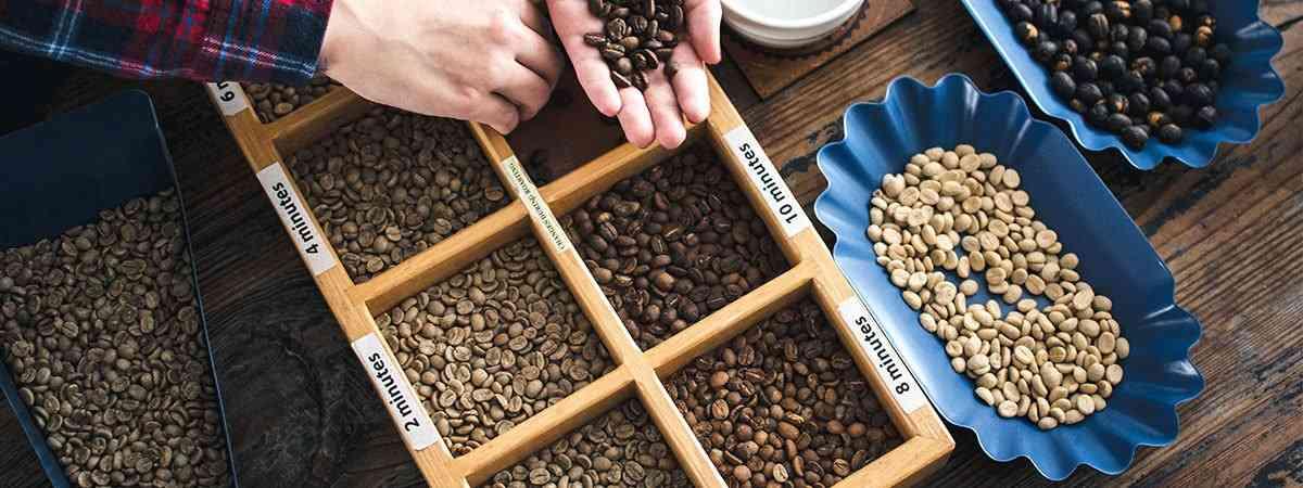 Roasting Coffee: Light, Medium and Dark Roasts Explained