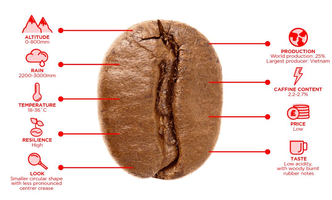 Robusta coffee blend traits